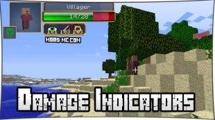 Damage Indicators 1.16.2, 1.12.2, 1.7.10