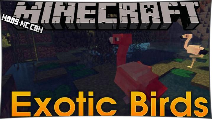 Exotic Birds - мод на птиц 1.12.2, 1.11.2, 1.10.2, 1.8, 1.7.10