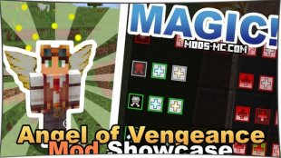Angel of Vengeance 1.12.2, 1.10.2