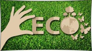 Ecology - мод на экологию 1.12.2, 1.11.2, 1.10.2, 1.7.10